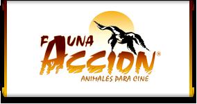 Animales para cine y publicidad